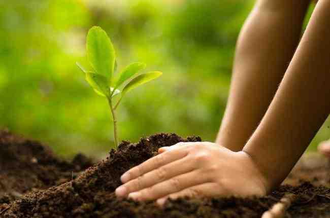 اهداف حسابداری محیط زیست