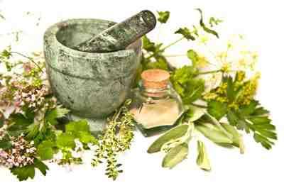 مقاله بازاریابی گیاهان دارویی