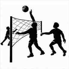 بروشور ورزش والیبال