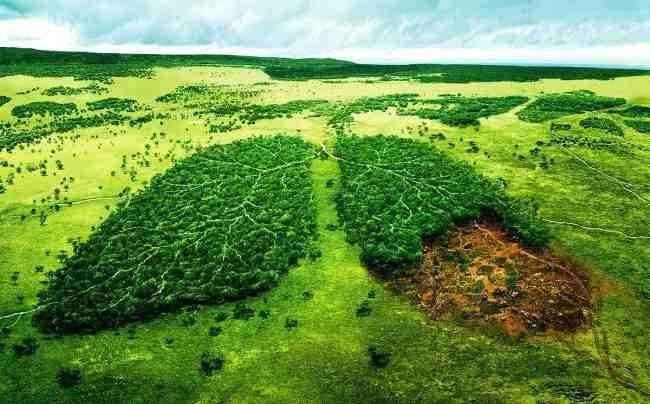 تحقیق درباره ی حسابداری محیط زیست