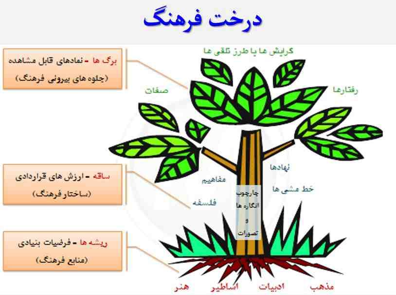درخت فرهنگ
