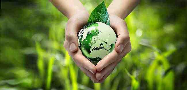 تعریف محیط زیست چیست