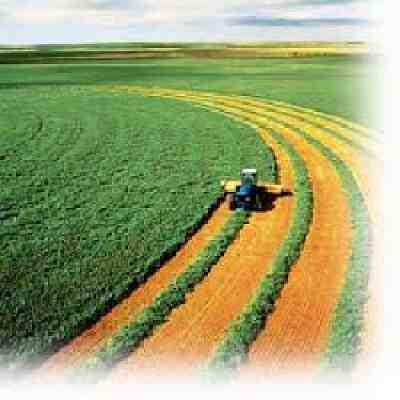 تحقیق زراعت غلات