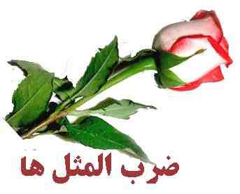 دانلود ضرب المثل های فارسی