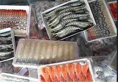 طرح توجیهی فرآوری ماهی و میگو