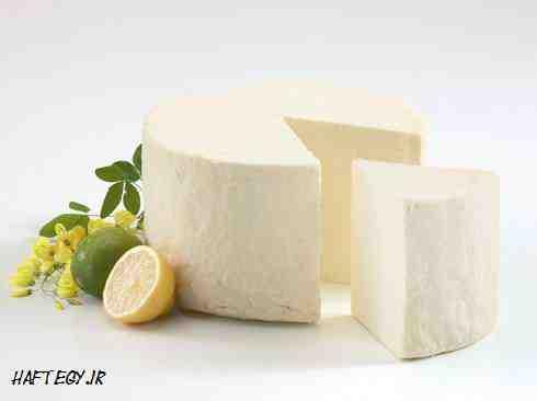 طرح توجیهی شرکت تولیدی پنیر