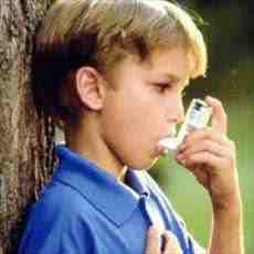 رابطه آسم و آلاینده های محیطی