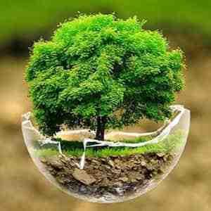 تحقیق در مورد منابع طبیعی