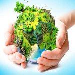 مقاله حفظ محیط زیست
